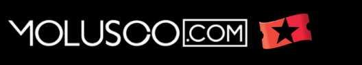 MOLUSCO.COM